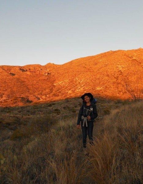 The rolling desert hills