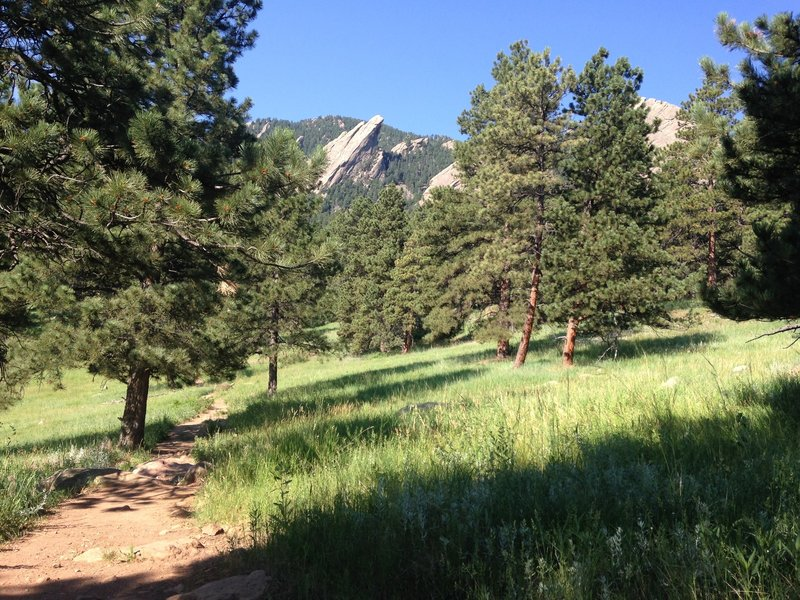 Beautiful views of the Flatirons from Bluebell Spur Trail.