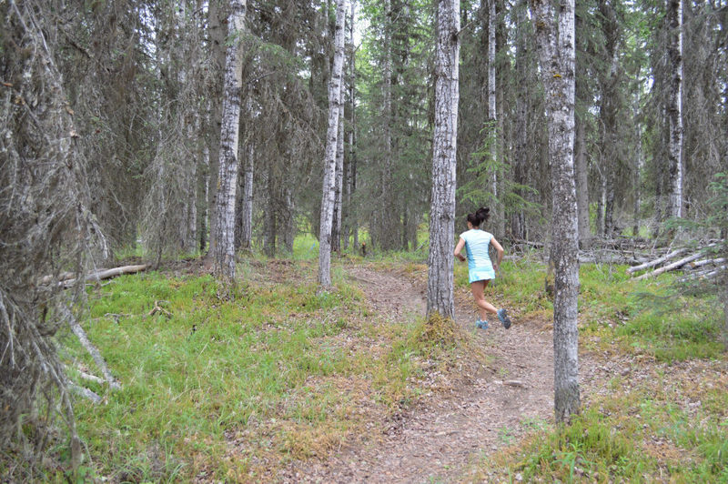 Running up into the second section Mosquito SingleTrack, really pretty forest in this area!