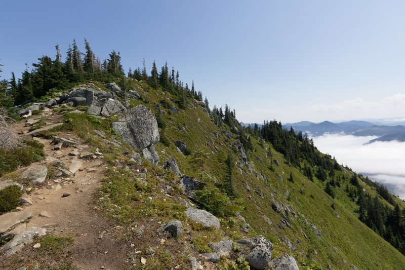 Trail to the summit.