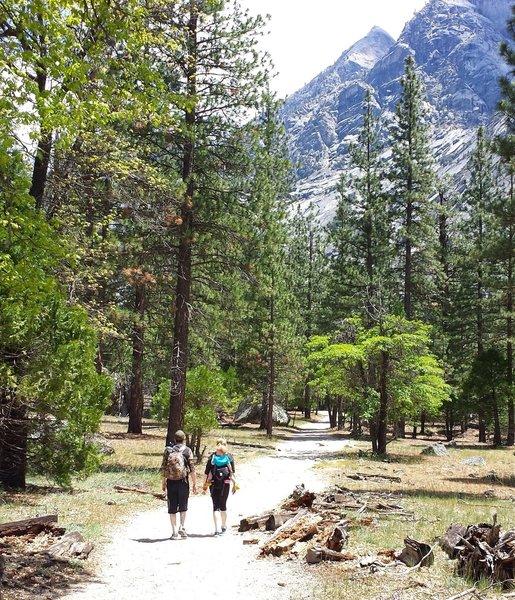 Trail on way to Mist Falls