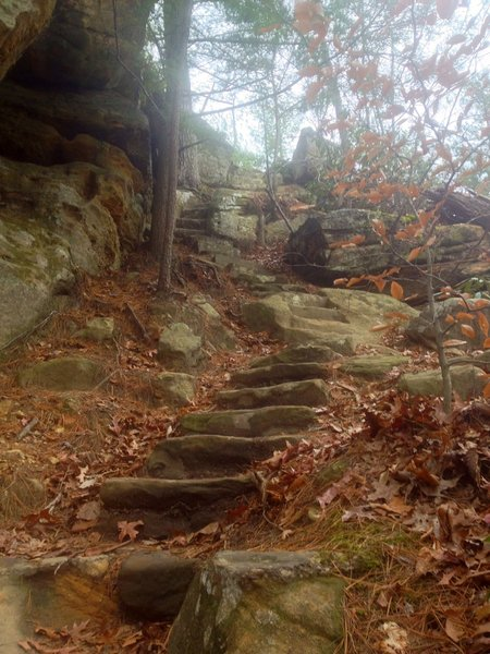 Rock Garden stairmaster