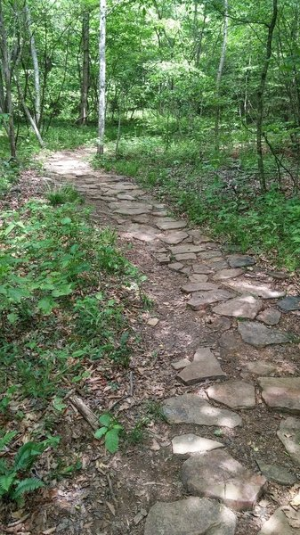 Rock armoring along the Sore Heel Trail