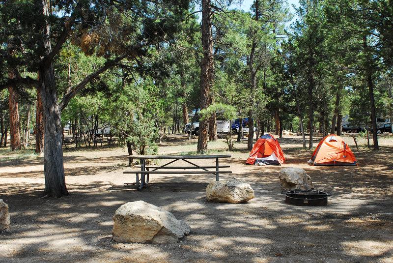 Grand Canyon National Park Mather Campground