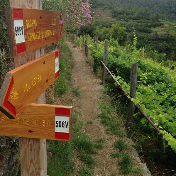 Trail marker near Groppo