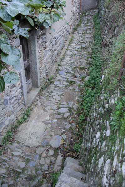 Old mule path leading out of Manarola