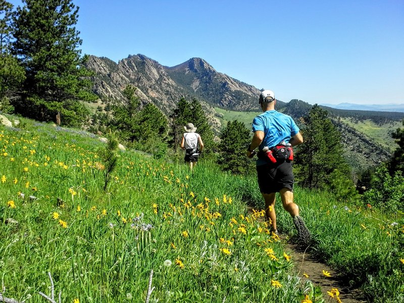 Trail runners enjoy the views of the valley below and abundant wildflowers in the Spring and Summer