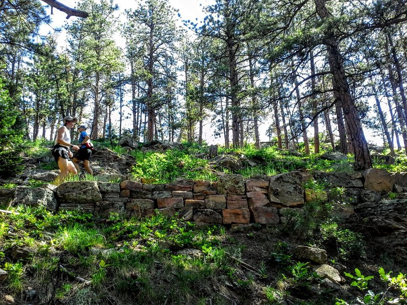 Stay cool in the shade of the pines. Switchback trails lead to the top of the ridge revealing stunning views of the valley below.