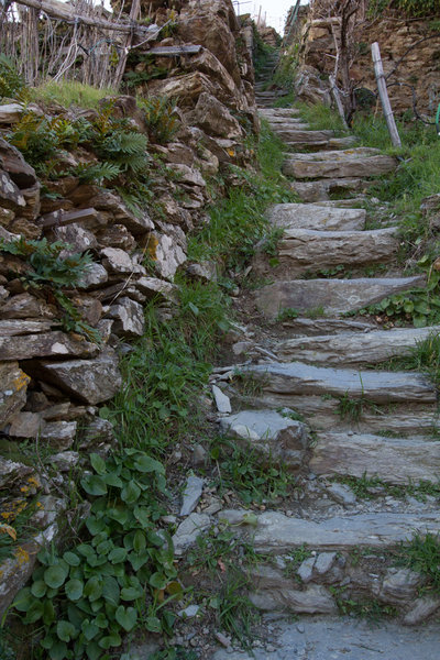 The stair climb from Cinque Terre Trekking gear shop in Manarola