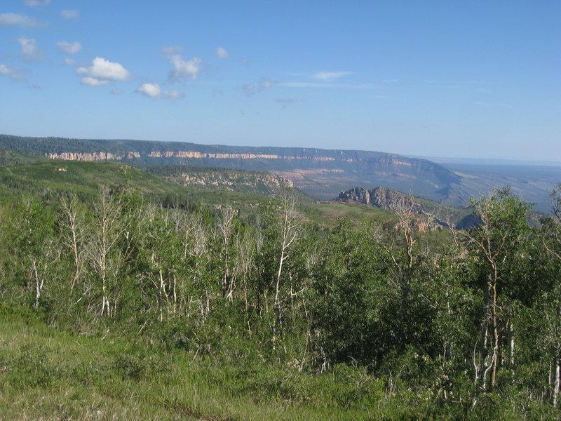 Saddle Mountain Trail views (photo by (brewbooks)