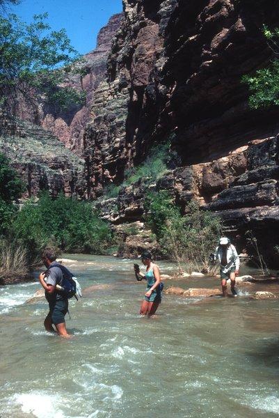 People hiking through Havasu Creek (photo by Richard M. Schreyer)