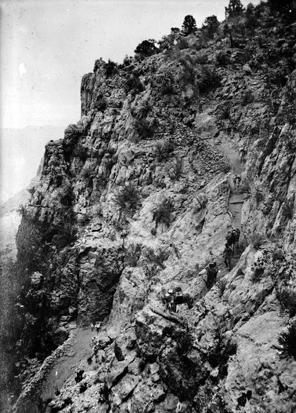 Men leading mules down the Old Bright Angel trail, circa 1905.  (photo by NPS Kolb brothers)