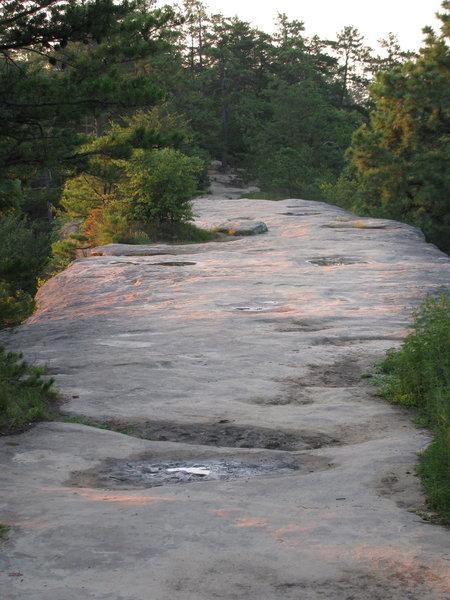 Top of Natural Bridge