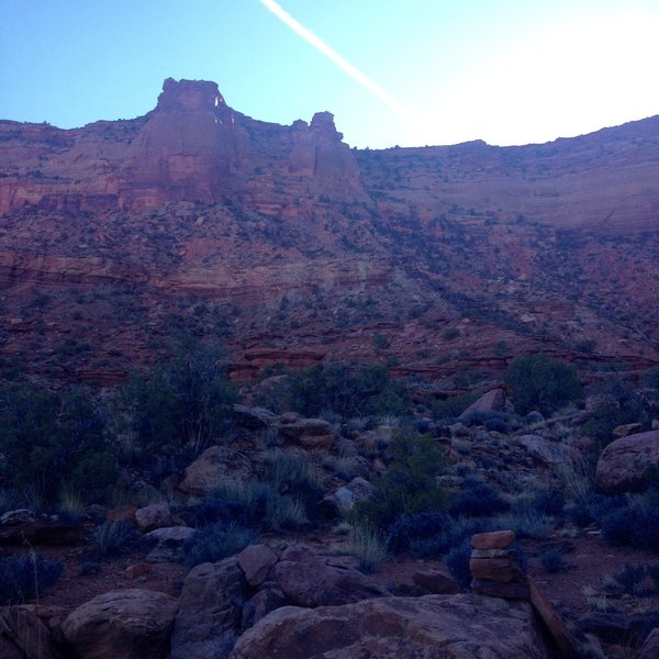 Looking back up at the Gooseberry Trail from the wash.