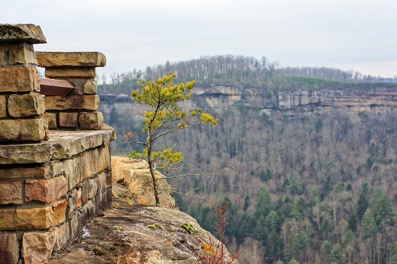 View from the overlook at Chimney Top Rock