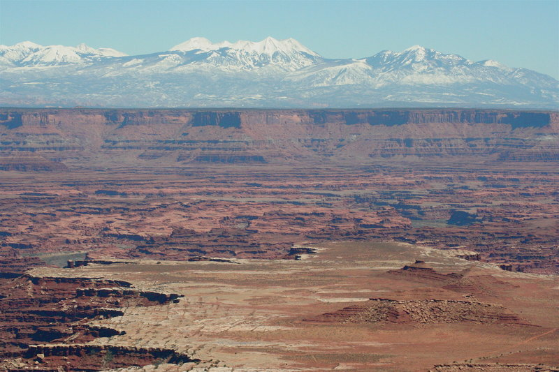 The White Rim from Buck Canyon Overlook