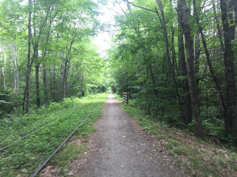 The wide open rail trail is nearly empty on weekdays.