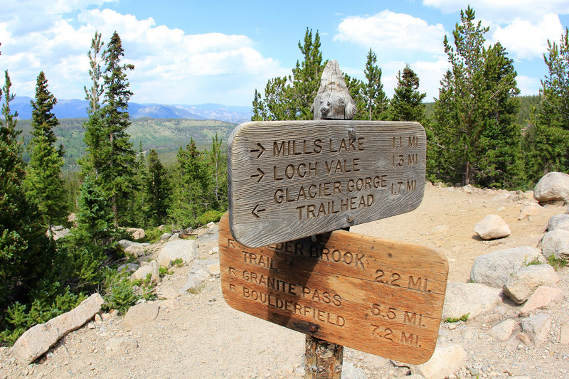 Y junction trail sign (photo by daveynin)