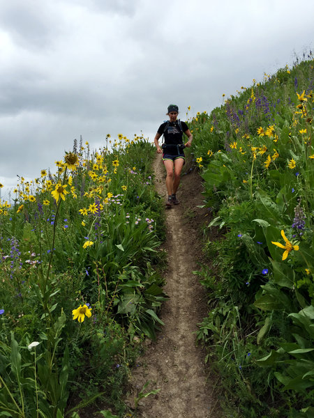 Running through overhead wildflowers on the final descent.  (photo by Shana Light)
