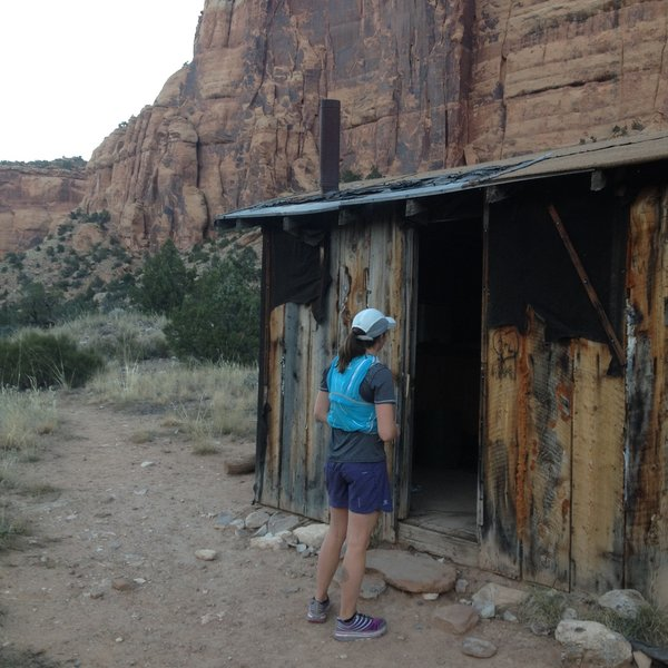 Scoping out the namesake cabin.