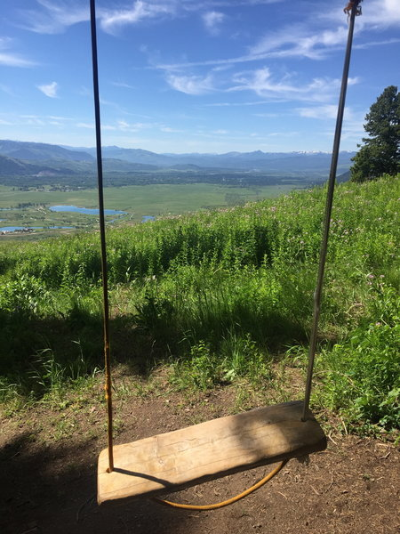 The swing just off the Wildflower Trail