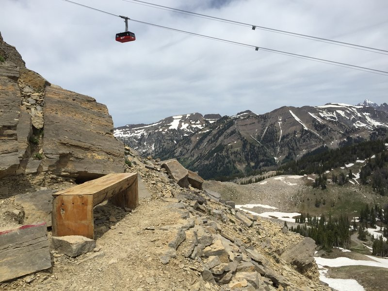 """The bench on the East Ridge section of the Cirque Trail, just before the """"red rock"""" scramble section."""