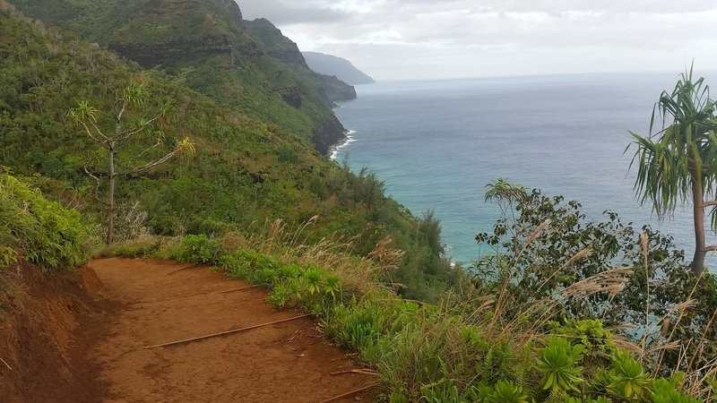Dirt portion of trail, on cliff's edge