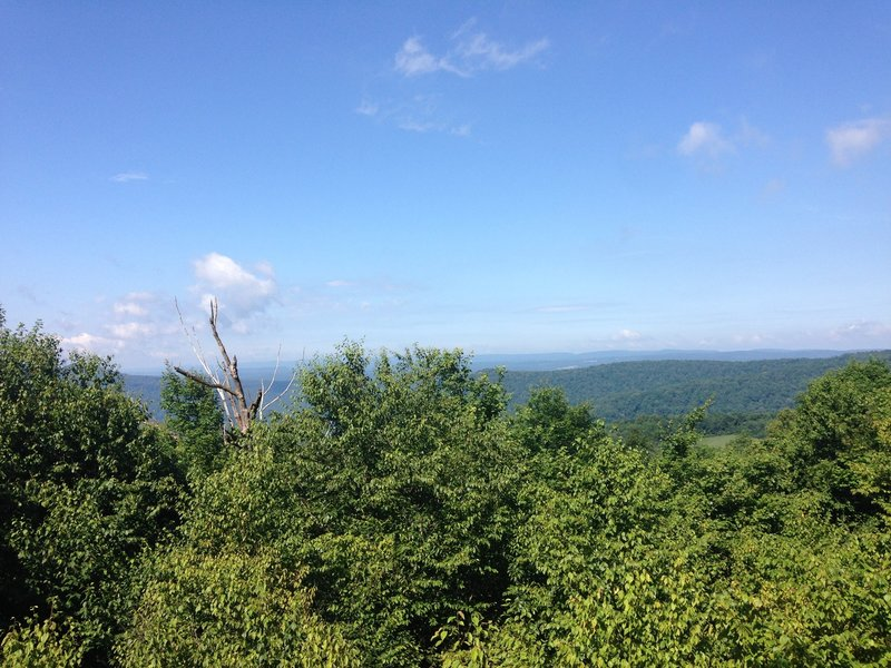 While the trail traverses many ridges, there are few spots to look out over the land.