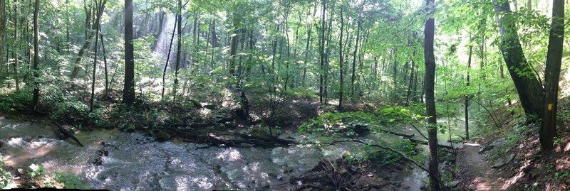 Sunlight weaves its way through the thick canopy, catching hints of mist along Lick Run.  A short series of switchbacks lead to this gem, where the cold water in summer offers a brief respite from an otherwise absurdly humid trail.