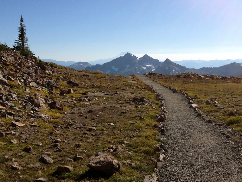 Leaving the High Skyline Trail for the Pebble Creek Trail