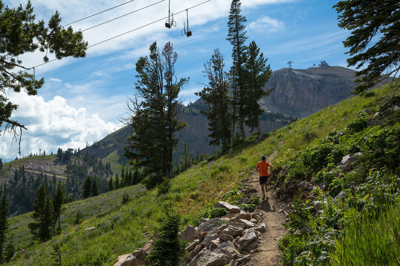 Cruising underneath the Marmot lift near the top of Wildflower Trail. Photo: Patrick Nelson / Jackson Hole Mountain Resort