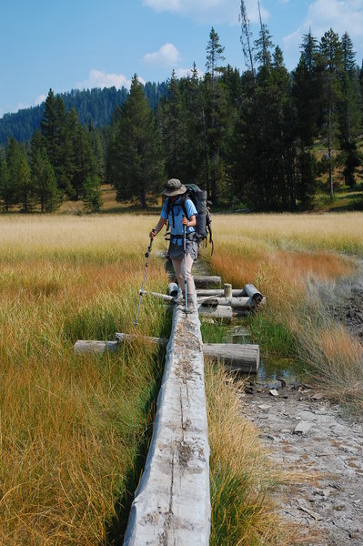 Yellowstone, Bechler River Trail