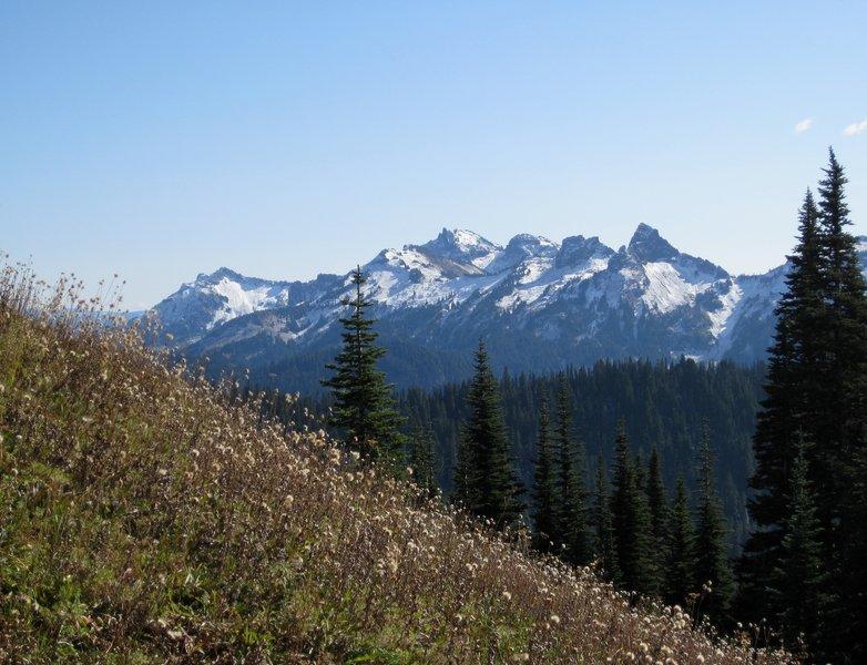 Tatoosh Range from near Mildred Point (photo by Brewbooks)