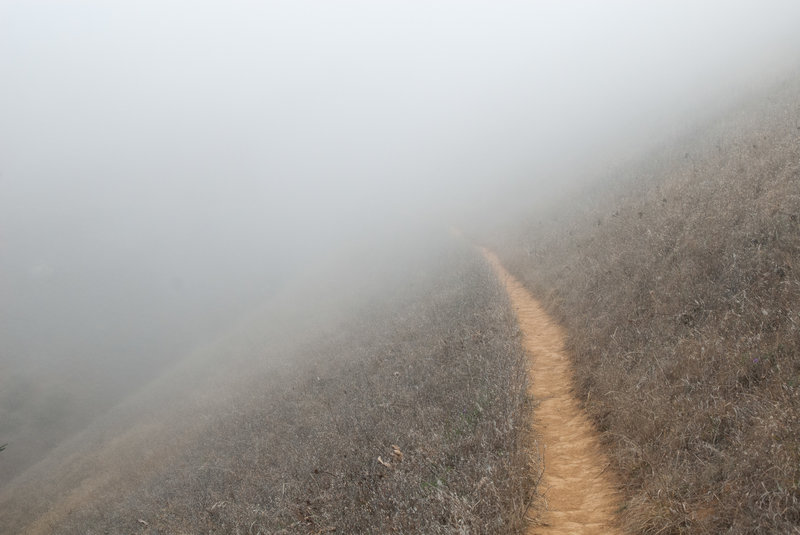 Disappearing trail