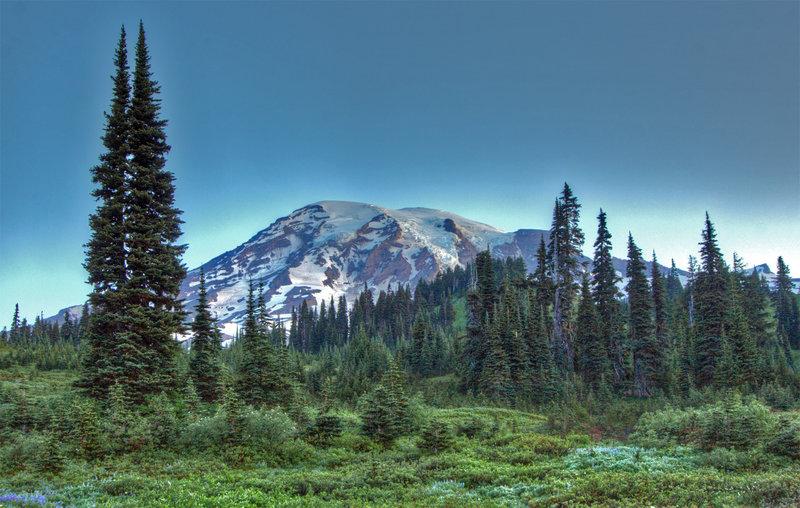 Views from Alta Vista (photo by Ralph Arvesen)