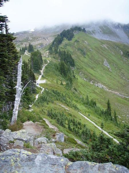 The Alta Vista ridge (photo by Reba Bear)