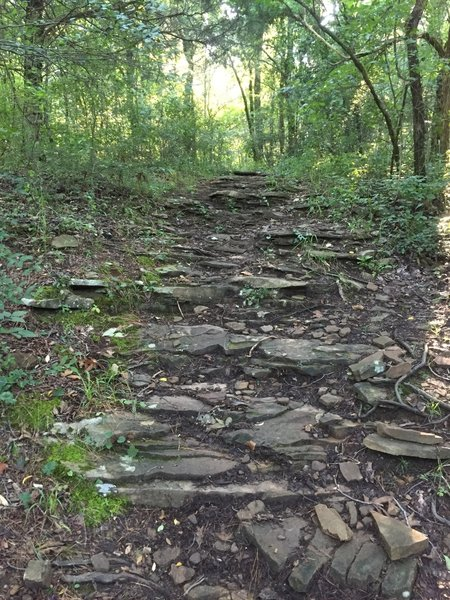 Rocky section leading to the South Plateau Loop