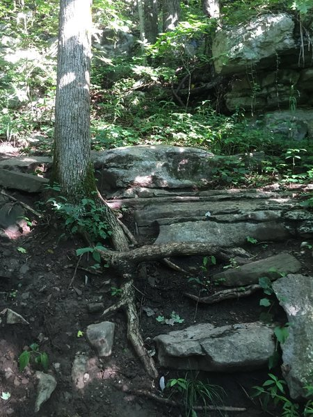 One of the many spots on Death Mile that require scrambling or climbing.