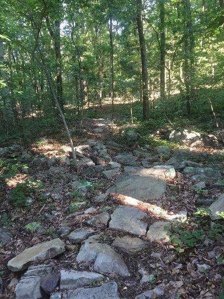 Rocky Bucca Trail
