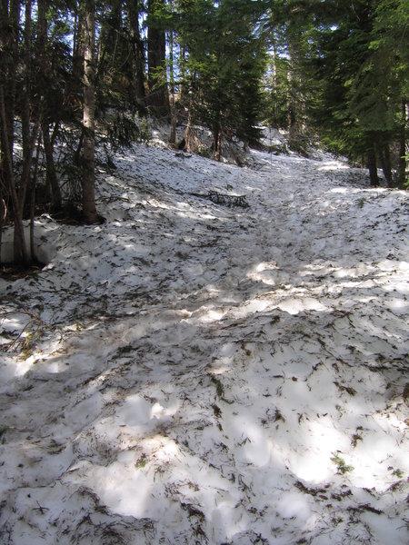 Narada Falls trail with snow