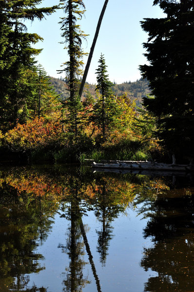 Small tarn on the High Lakes trail - fall colors (photo by Steve Cyr)