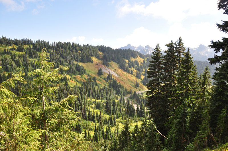 Views out to the Mazama ridge with fall color. (photo by Steve Cyr)