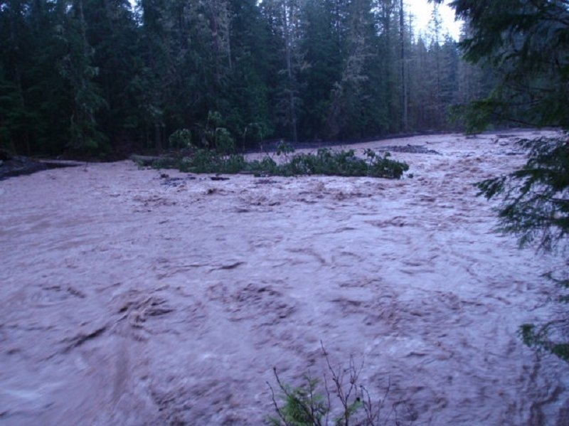 Rain swollen Tahoma Creek (photo by NPS Paul Kennard)