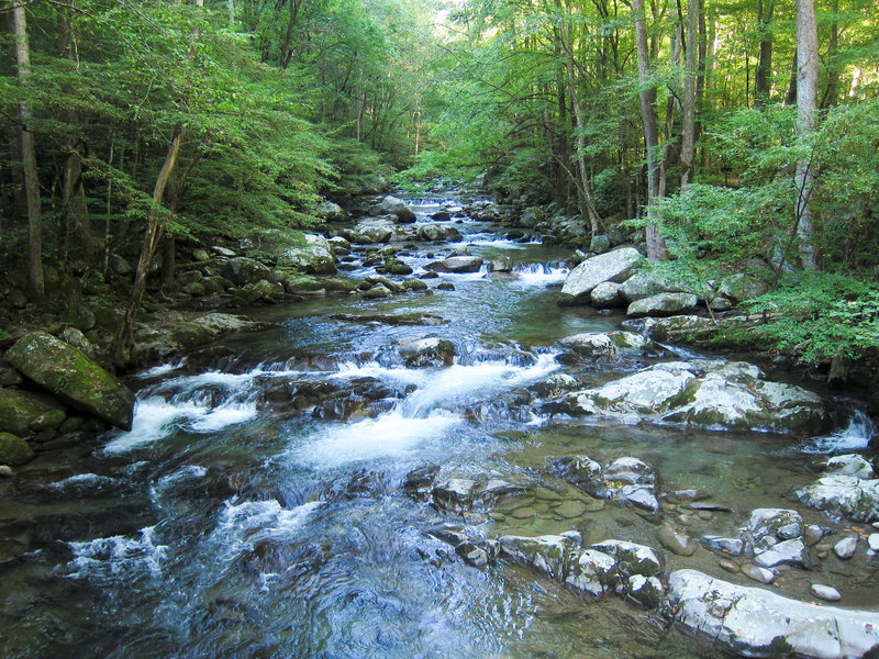 Big Creek in Great Smoky Mountains National Park