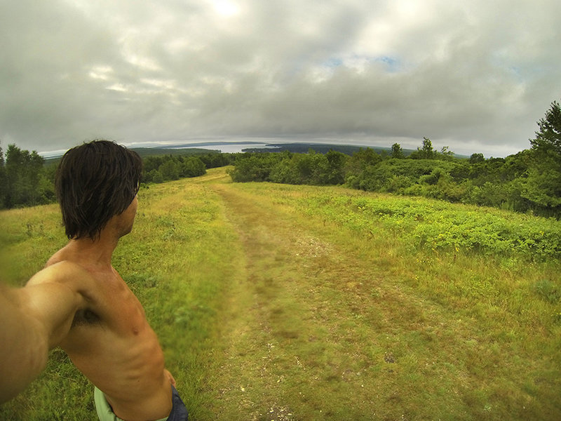 Looking south over the blueberry fields