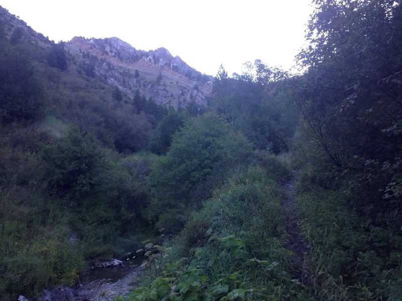 A view from the trail of the creek and a band of multicolored cliffs