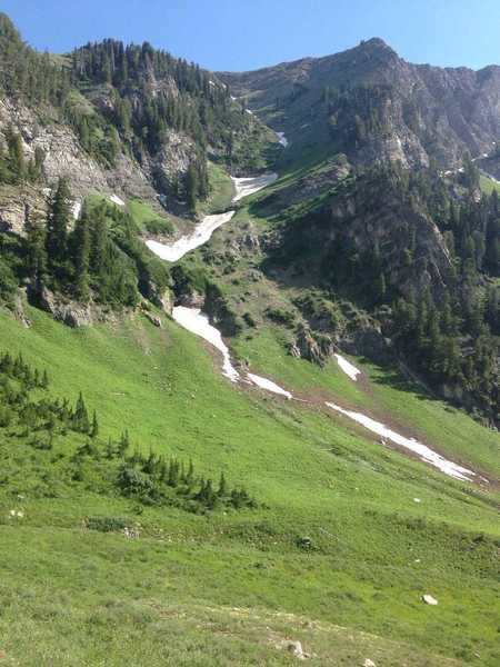 A view of a gully with some snowfields, even in late June
