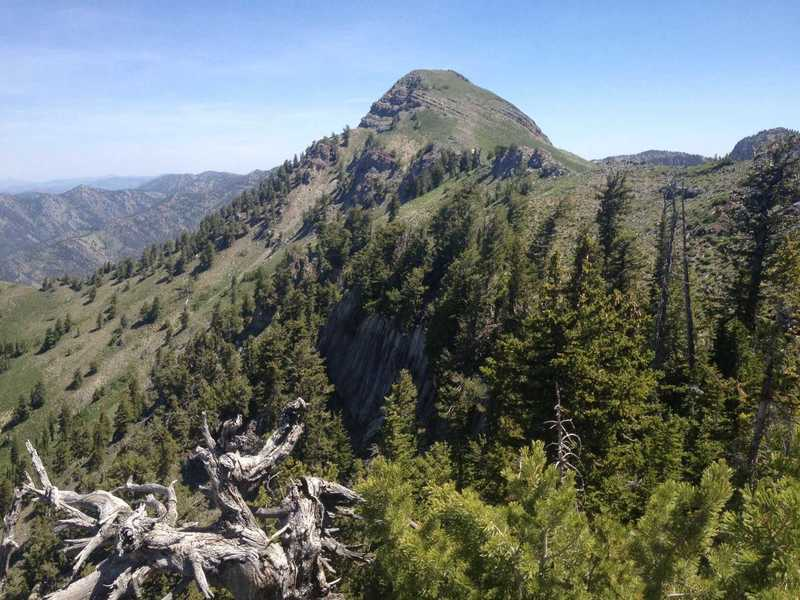 A view of the spectacular Cherry Peak from the high point on the ridge before Cherry Peak.
