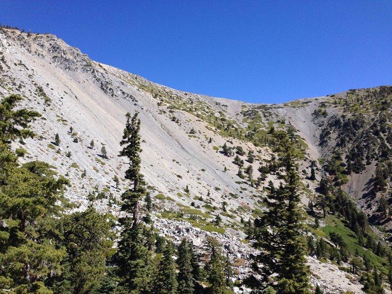 Looking toward the summit and ridge.