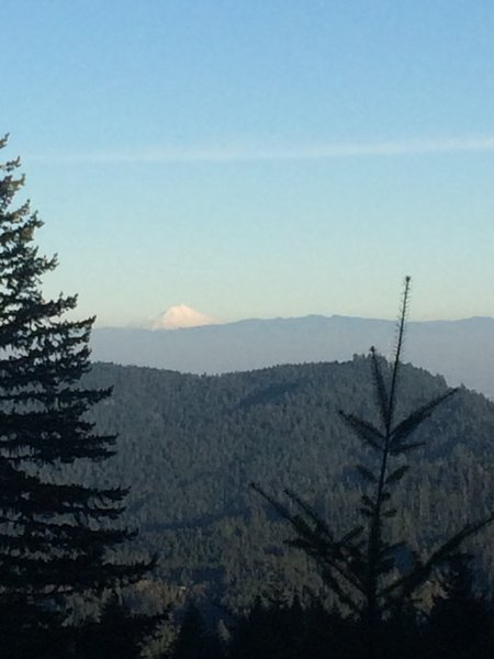 Cascade Peak peeking out of the trees